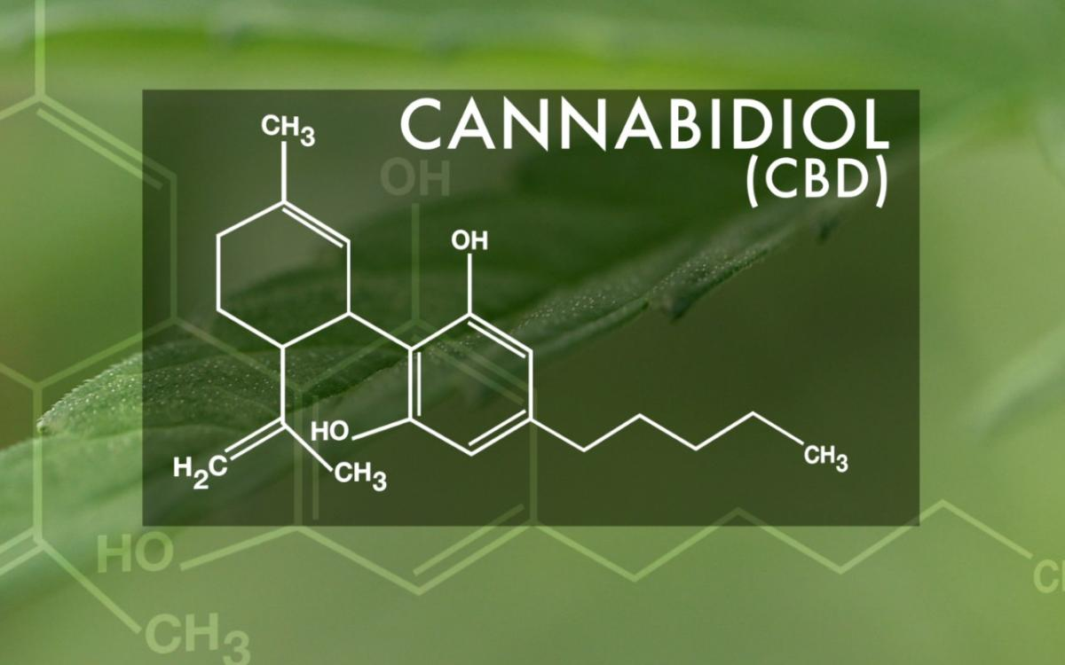 What is CBD? Disputes Over Its Legality Are a Growing Source of Tension.